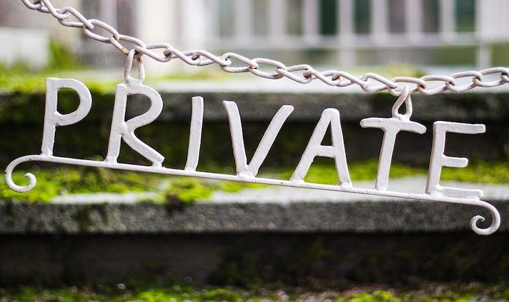 Bank Privatization